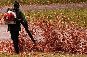 worker using leaf blower