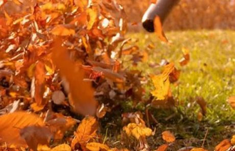 leaf blowing